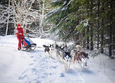 Finlandia: Aventura en Laponia Finlandesa