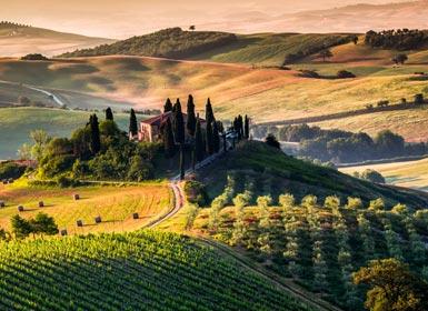 Italia: Roma y La Toscana Al Completo