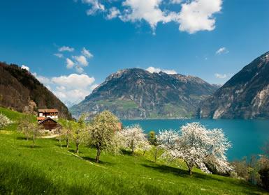 Suiza y París Al Completo