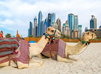 Viajes Semana Santa 2015Emiratos Árabes: Dubai, Sharjah y Abu Dhabi Al Completo