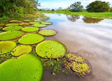 Circuitos por Perú 2017:Perú y Amazonas