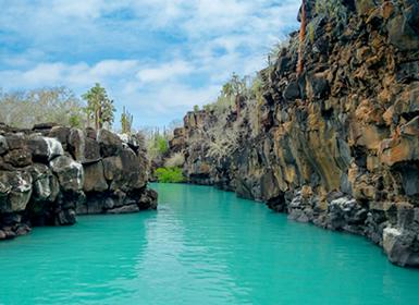 Ecuador: Quito y Galápagos con Isla Santa Cruz