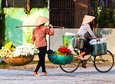 Vietnam: Ruta Clásica con Sapa
