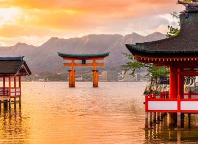 Japón: Tokio, Kioto y Osaka