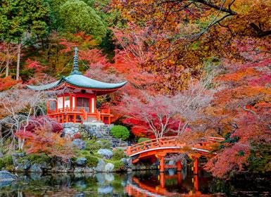 Viajes Japón 2017: Tour por Japón Alpes Nipones