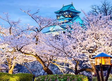 Japón: De Tokio a Hiroshima