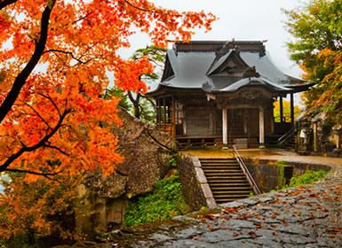 Japón: Ruta de templos, fortalezas y jardines