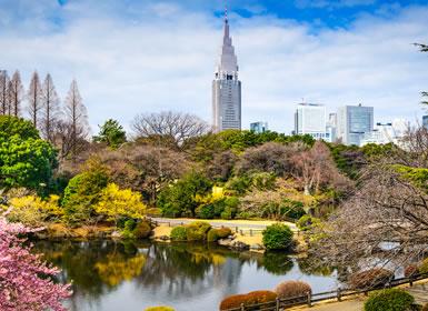 Japón: De Tokio a Matsumoto