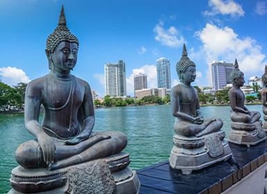 Sri Lanka: De Colombo a Yala