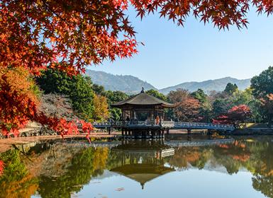 Viajes Japón, Polinesia Francesa, Bora Bora, Tahiti 2017: Viaje de Novios Japón: De Osaka a Tokio y Playas de Bora Bora