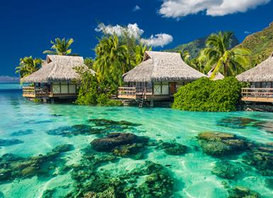 Japón y Polinesia Francesa: Japón y Bora Bora
