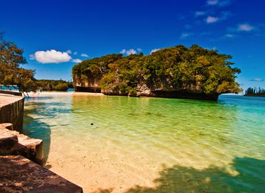 Nueva Caledonia: Nueva Caledornia a su aire con la Isla de los Pinos