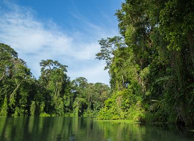Viajes Costa Rica 2017: Tortuguero, Arenal y Manuel Antonio