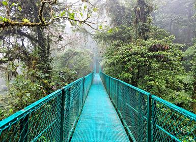 Viajes Costa Rica 2017: Tortuguero, Caribe, Arenal, Monteverde y Manuel Antonio