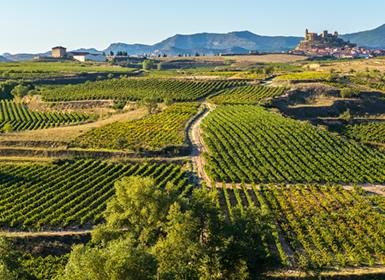 Norte de España: La Rioja y Álava, de Logroño a Santo Domingo de la Calzada