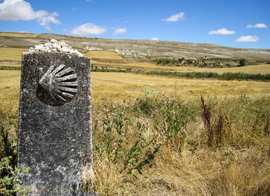 Galicia: Camino de Santiago a pié de Sarria a Santiago