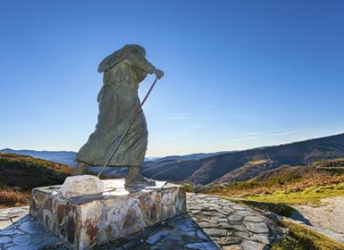 Galicia: Camino de Santiago a pié de Lugo a Santiago