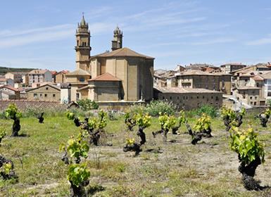 País Vasco: Ruta por el País Vasco y la Rioja Alavesa -Vino, Gastronomía y Paisajes