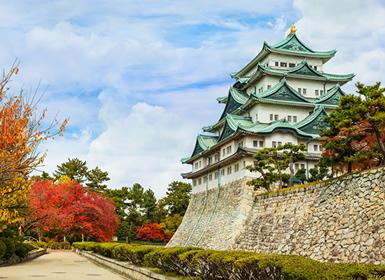 Viajes Japón 2017: Circuito Osaka, Kioto, Nagoya y Tokio