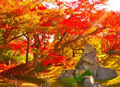 Viajes Japón 2017: Tour por Japón: Tokio, Kioto, Osaka e Hiroshima, Circuito por Jaón