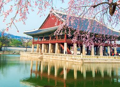 Viajes Corea Del Sur, Japón 2017: Viaje organizado Corea del Sur y Japón: De Seúl a Daegu con Hiroshima y Miyajima