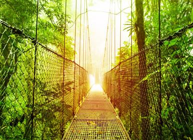 Viajes Costa Rica 2017: Tortuguero, Caribe, Arenal, Monteverde y Guanacaste