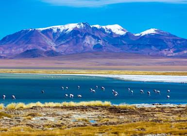 Viaje Fly and Drive Chile Al Completo A Tu Aire