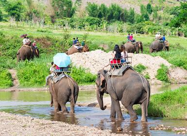 Circuitos Tailandia 2017:: Combinado Bangkok y Chiang Mai