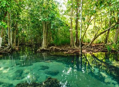 Viajes Playas de Tailandia 2017: Viaje Oranizado Tailandia: Bangkok, Chiang Rai, Chiang Mai y Costas de Krabi
