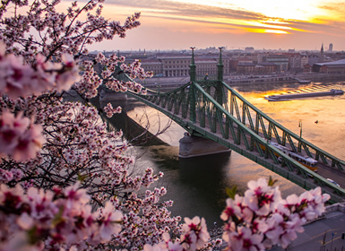 Viajes Semana Blanca 2017 Budapest y Viena Esencial  en tren