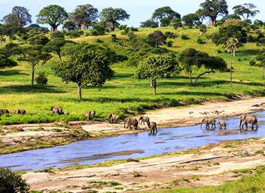 Combinados África Tanzania con Zanzíbar Al Completo