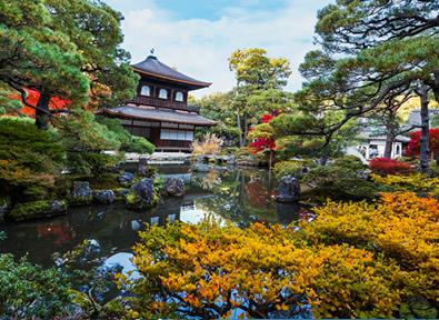 Turismo Kyoto Japón