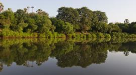 Busco un viaje chollo en Gambia: Sindola y Sur de Gambia