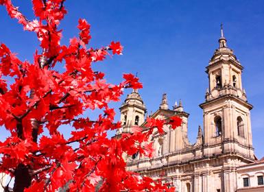 Viajes Colombia 2019: Bogotá y Cartagena de Indias con P.N. Tayrona e Islas del Rosario