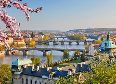 Viajes Centroeuropa, Holanda, Países Bajos y Francia 2019-2020: Praga, Ámsterdam y París en avión
