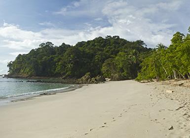 Viajes Costa Rica 2019-2020: Costa Rica Naturaleza: Tortuguero, Arenal, Monteverde y Manuel Antonio