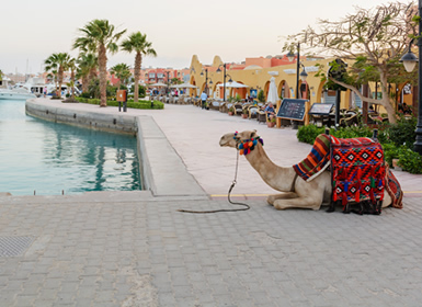 Viajes Egipto 2019: El Cairo y Crucero 4 días con Hurghada