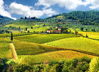 Viajes Italia 2019-2020: Viaje Fly and Drive Italia: Ruta en coche por La Toscana, desde Florencia a Siena