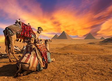 Viajes Egipto 2019: El Cairo y Crucero días