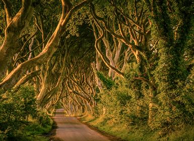 Viajes Irlanda 2019-2020: Ruta de Juego de Tronos por la Isla Esmeralda