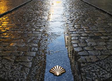 Viajes Galicia, Castilla León, País Vasco, La Rioja y Navarra 2019-2020: Ruta en coche del Camino de Santiago, del románico al gótico a tu aire