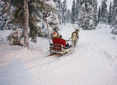 Viajes Finlandia 2017: Especial Pre-Navidad Laponia SALLA