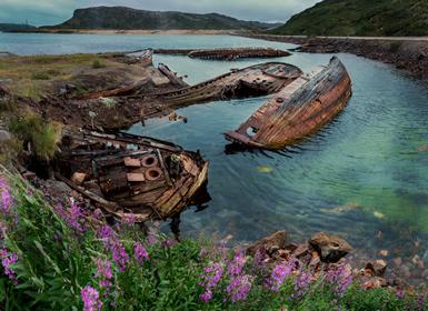 Viajes Suecia, Noruega, Finlandia y Norte de Europa 2019: Laponia, del Golfo de Botnia al Mar de Barents