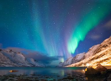 Viajes Noruega 2019: Oslo, Tromsø, Auroras Boreales y Ballenas
