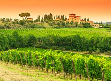 Viajes Italia 2019-2020: Viaje Fly and Drive: Ruta en coche por la Toscana más auténtica