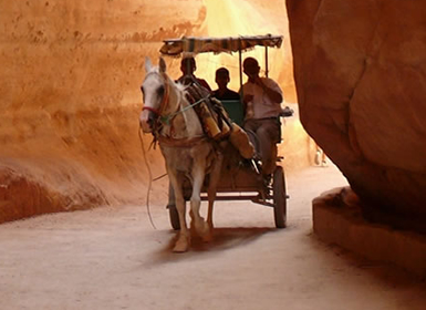 Viajes Jordania 2019-2020: Ammán, Mar Muerto, Madaba, Petra y Wadi Rum