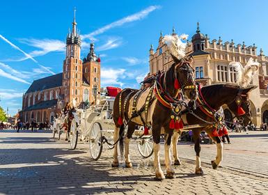 Viajes Centroeuropa, Polonia, Eslovaquia, Austria, República Checa y Centroeuropa 2018-2019: Praga, Viena, Cracovia y Varsovia