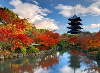 Viajes Japón 2019-2020: Tour Contrastes de Japón