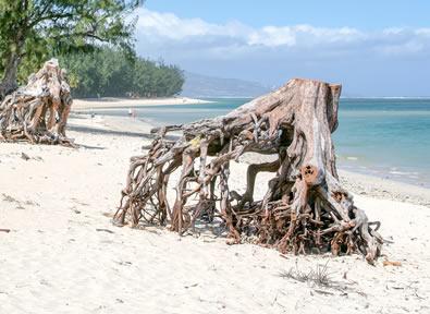 Viajes Seychelles, Isla Reunión e Islas del Índico 2019-2020: Ruta por Reunión y Playa en Seychelles