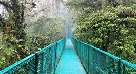 Busca un Viaje Chollo en Costa Rica: Tortuguero, Caribe, Arenal, Monteverde y Manuel Antonio